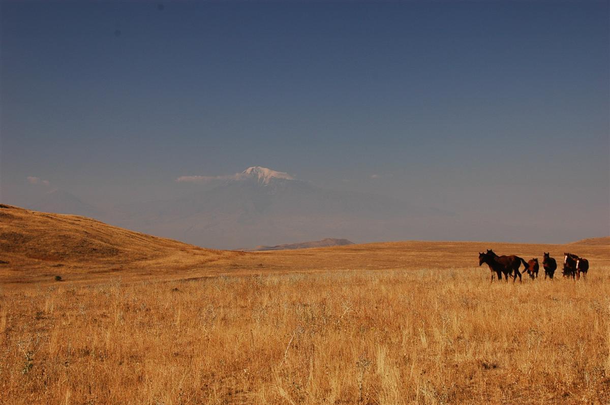 Arménie - cesta do vesnice Geghard