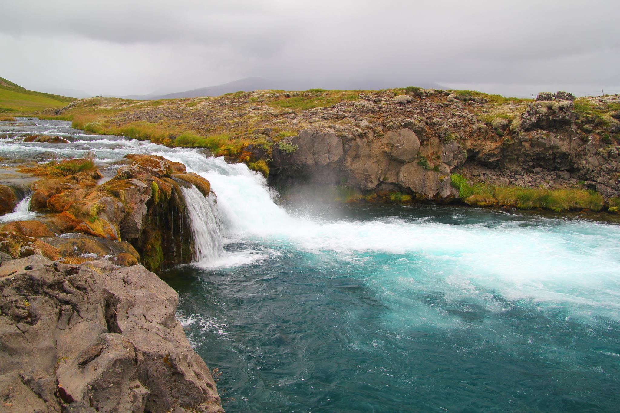 Island - Hvíta